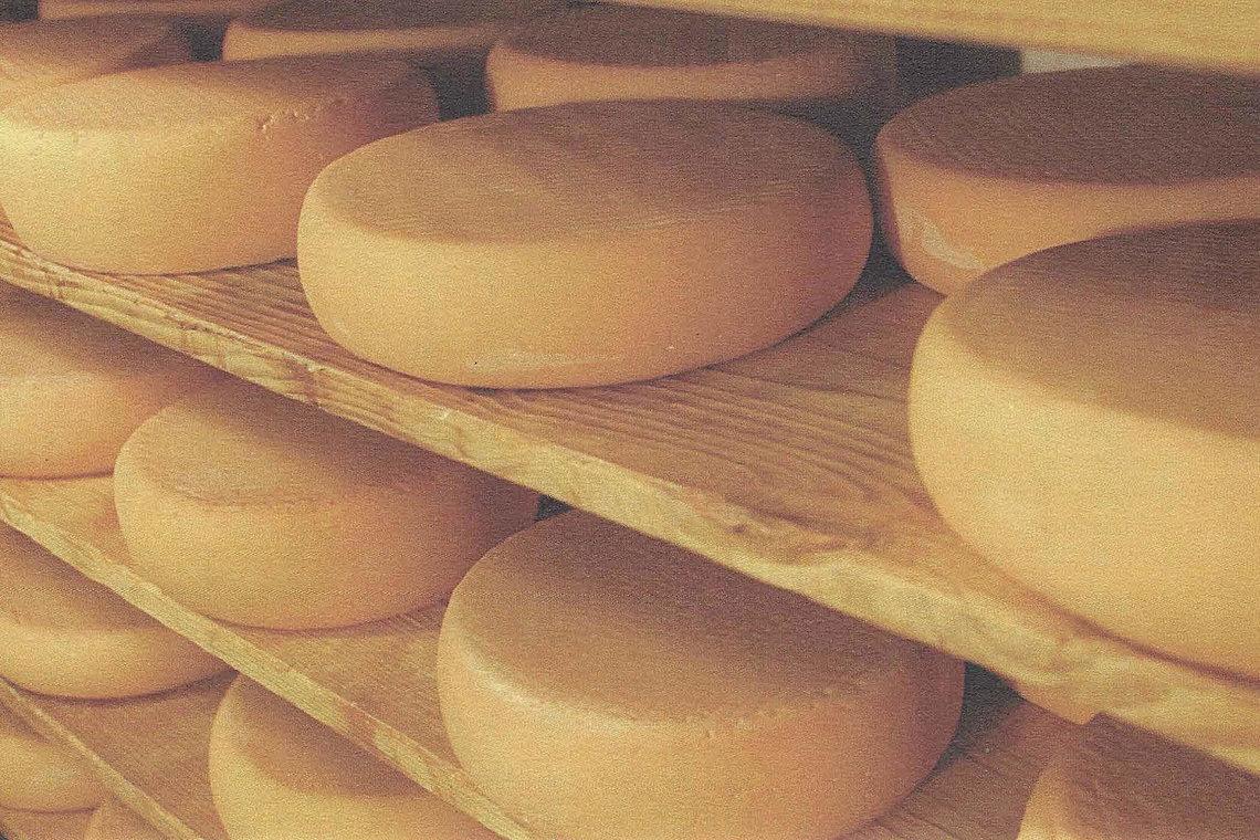 Tiroler Käseregal