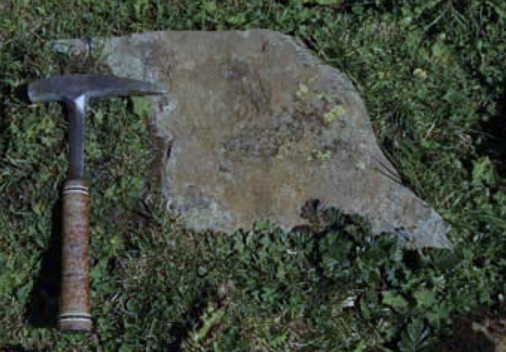 Pochplatte Rotenstein Serfaus