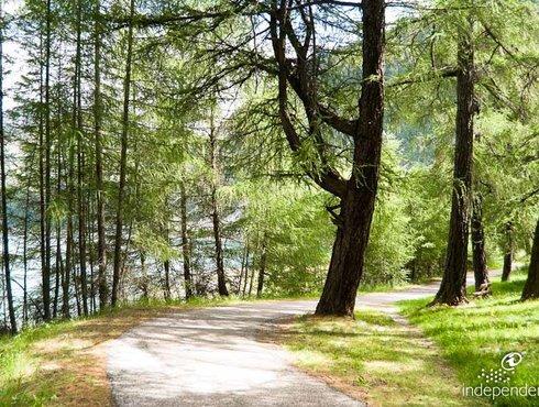 Wanderweg Um Den Reschensee