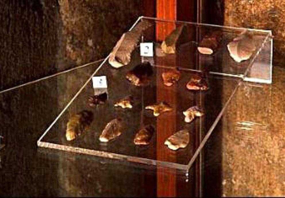 Museo Civico Conegliano Sezione Archeologica