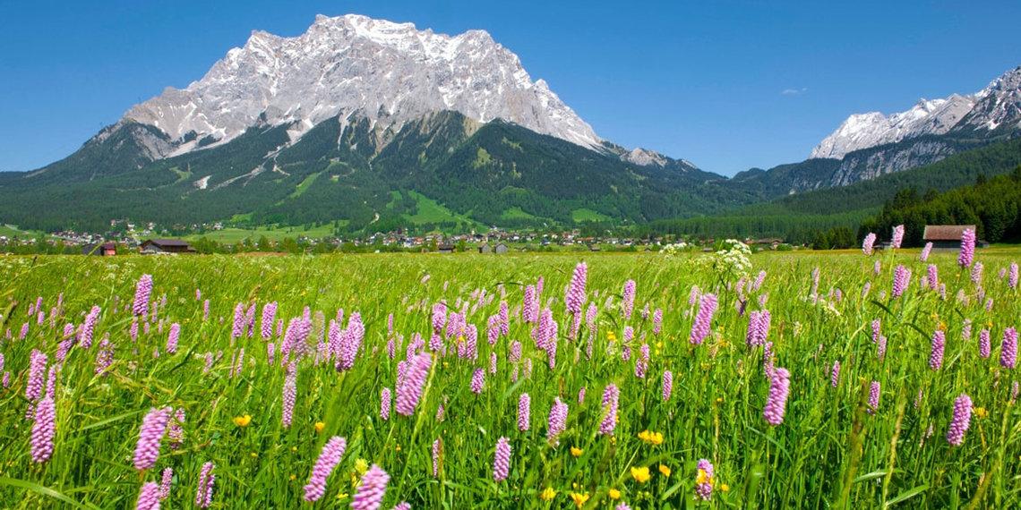 Frühling Zugspitze