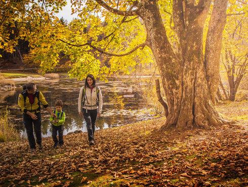 Herbst Trekking