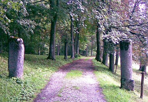 Aufgang Abodiacum, Lorenzberg, Foto Platschka