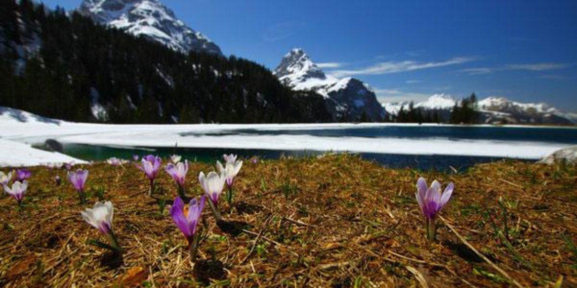 Frühling See Eis
