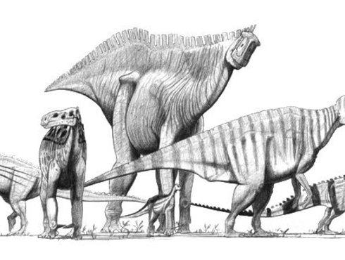 Ornithopods Zeichnung John Conway
