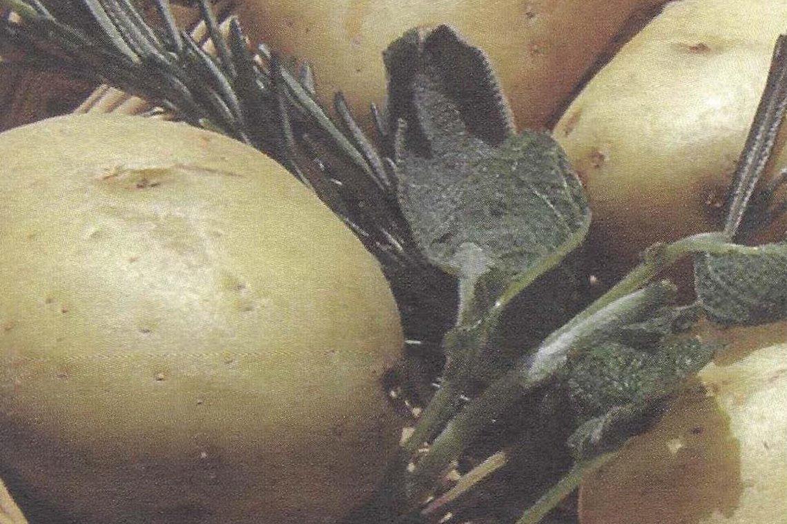 Besondere Lebensmittel Kartoffel