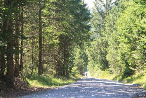 Schotterweg Nach Ehrenberg