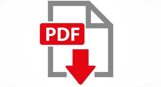 Optionales Icon für PDF-Files