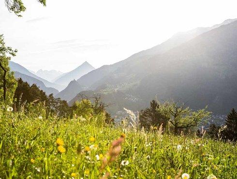 Frühling Tirol West