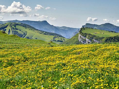 Monte Baldo Fototeca Trentino Sviluppo Spa