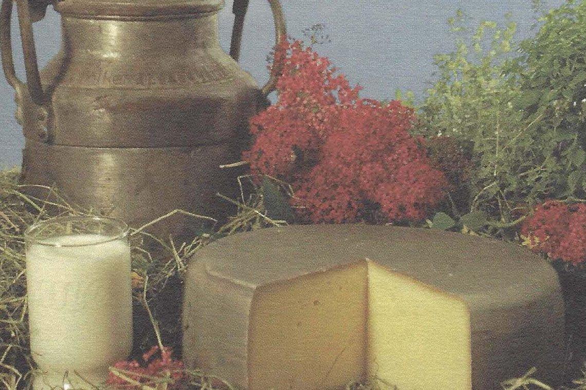 Besondere Lebensmittel Milch und Käse